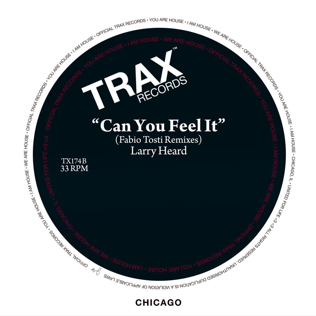Larry Heard (Can You Feel It) Fabio Tosti Remixes